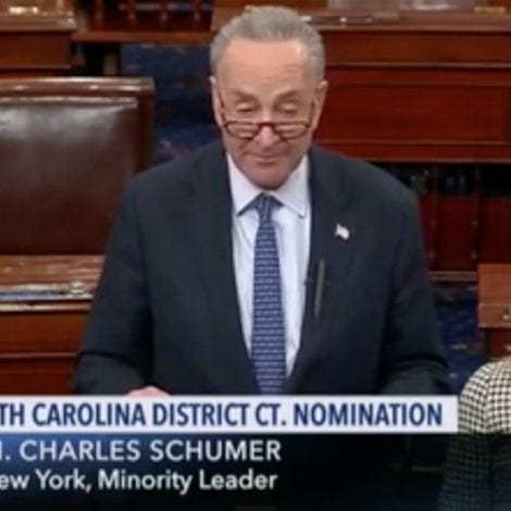 SCHUMER SHOCKER: Chuck Says He'll VOTE NO on Trump Nominee Because of Skin Color