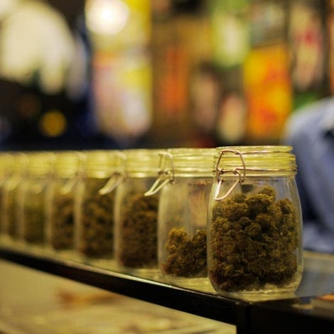 WEST COAST CHAOS: Los Angeles 'DRUG LOUNGES' Poised to Open