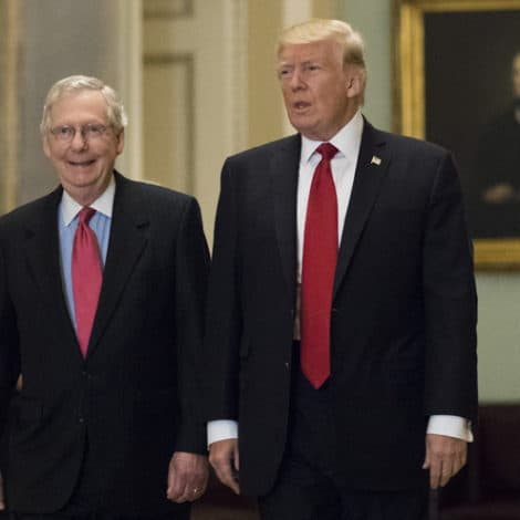 McCONNELL: Trump's Presidency Has Been 'My Best Years in the Senate'