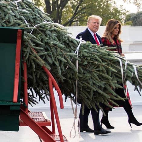 WASHINGTON POST: Melania Trump's Choice of 'Christmas Tree Color' is a 'BAD SIGN'