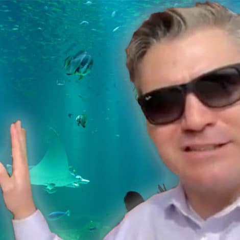 UPDATE: Jim Acosta Reports Live from 'Glass Barrier' at Local Aquarium