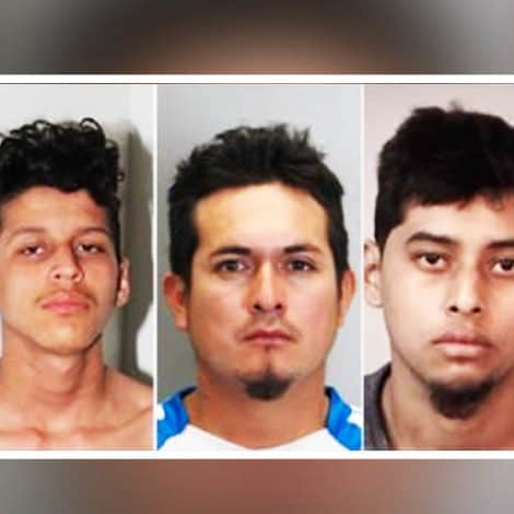 REPORT: Five MS-13 Members Arrested for 'Stabbing Teen 100 Times,' Setting Body on Fire