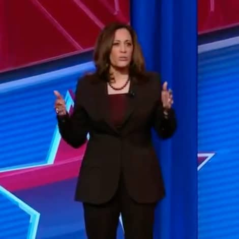 KAMALA HARRIS: If Elected I Will Use 'Executive Action' to Enact 'Gun Safety Laws'