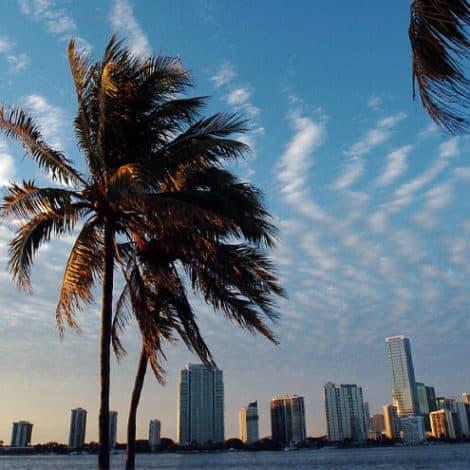 BREAKING: Florida Legislature PASSES Bill to BAN Sanctuary City Policies Across the State