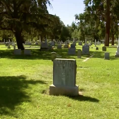 CALIFORNIA CHAOS: Bay Area Outraged After 91-Year-Old Man Beaten, Robbed Visiting Wife's Grave