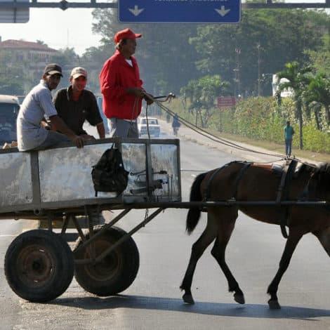 COMMUNIST UTOPIA: Cuba Warns of Fuel Cutbacks, Government Says Use 'Animal-Powered' Transportation