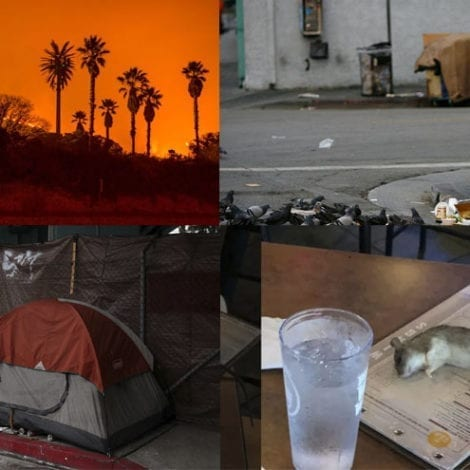 EXIT PLAN: Lifelong California Residents 'Ready to Move' Following Blackouts, Wildfires, Rat Infestations