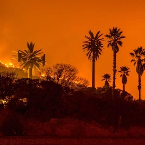 LA CHAOS: California Wildfires Threaten 10,000 Buildings in Los Angeles, Power Cut to 2.5 Million