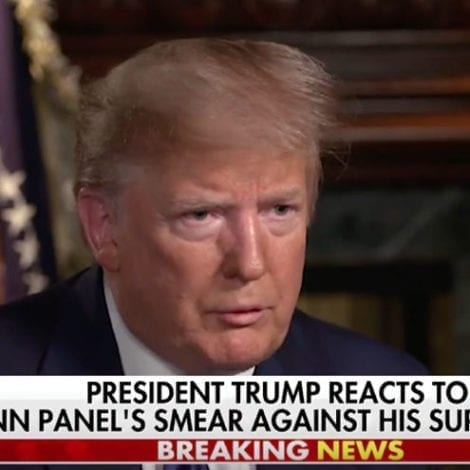 TRUMP TO HANNITY: 'Don Lemon Is Terrible, Not a Smart Person'